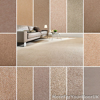 Beige Carpet Cheap Beige Carpets Loop Twist & Saxony Pile Beige Carpets Feltback