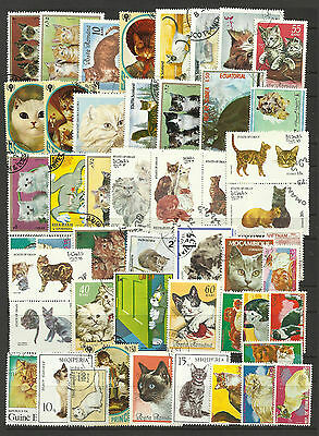 CATS Nice Collection Packet of 50 Different WORLD Stamps Mostly USED/CTO