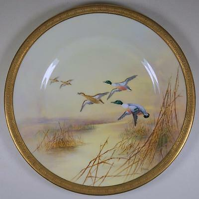 A Royal Doulton Superb Hand Painted Shoveller Duck Bird Display Plate by A Perry