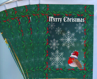 6 robin redbreast bird holiday merry Christmas art cards Santa hat Susan Alison
