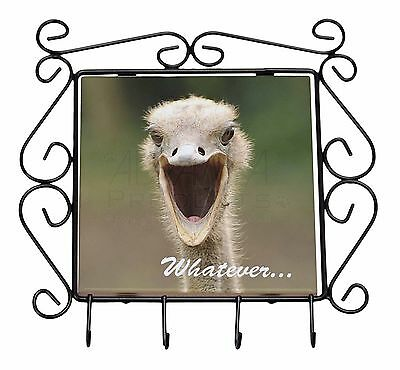 Ostritch with 'Whatever' Wrought Iron Key Holder Hooks Christmas Gift, AB-OS2KH