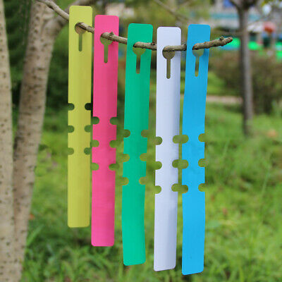 100x Plastic Plant Tree Hanging Markers Tags Nursery Seed Gardening Labels White
