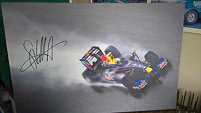 RED BULL RACING F1 PICTURE ON CANVAS SIGNED by SEBASTIAN VETTEL WORLD CHAMPION