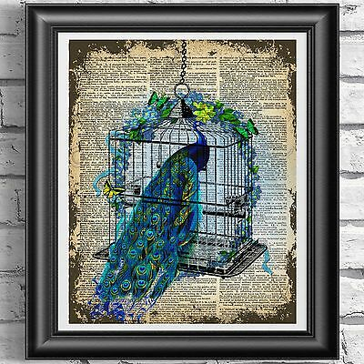 DICTIONARY PAGE ART PRINT VINTAGE ANTIQUE BOOK Peacock Birdcage Picture