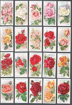 1912 Wills's Cigarettes Roses A Series Tobacco Cards Complete Set of 50