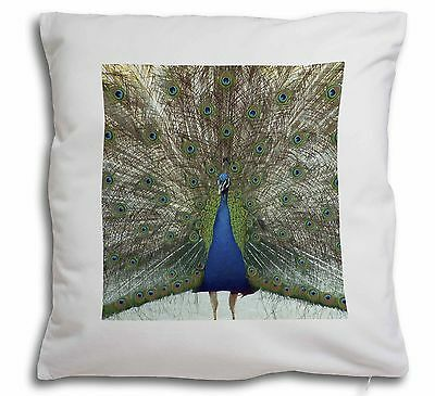 Rainbow Feathers Peacock Soft Velvet Feel Scatter Cushion Christmas, AB-PE13-CPW
