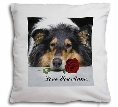 AD-RC1lymPW Rough Collie Dog /'Love You Mum/' Glass Paperweight in Gift Box Chris