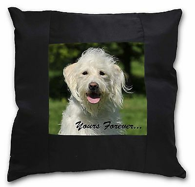 White Labradoodle 'Yours Forever' Black Border Satin Scatter Cushio, AD-LD3y-CSB