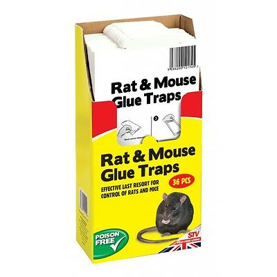 Poison Free Rat Glue Trap - The Big Cheese Catcher Rats Mice Mouse Rodent Pest