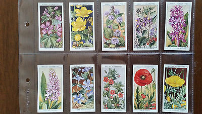 W.D. Wills Cigarette Cards - WILD FLOWERS (1st Series) - Set of 50 in Sleeves