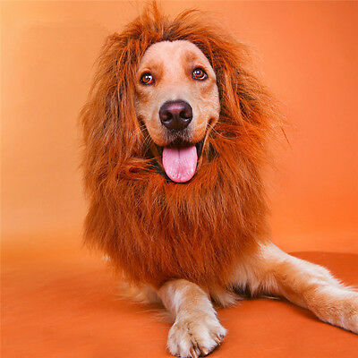 Pet Costume Lion Mane Wig for Dog Halloween Clothes Festival Fancy Dress up JB