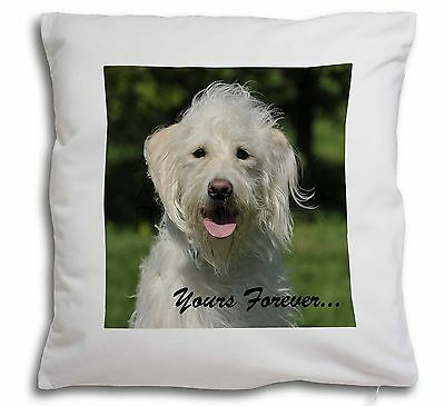 White Labradoodle 'Yours Forever' Soft Velvet Feel Scatter Cushion , AD-LD3y-CPW