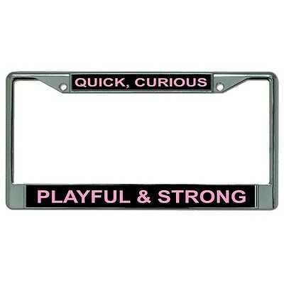 quick curious playful & strong chrome metal license plate frame made in usa