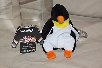 TY Beanie Baby WADDLE Sports Pittsburgh Penguins Tampa Bay Commemorative & Case