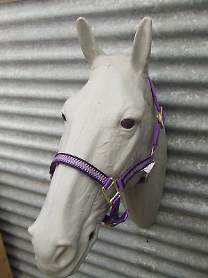 Ecotak purple halter/headstall with houndstooth pattern pony Ecotak