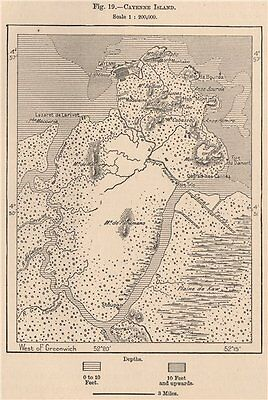 Cayenne Island. French Guiana 1885 old antique vintage map plan chart