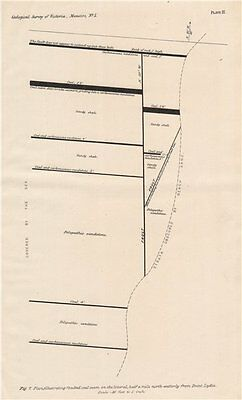 Faulted coal seam near Point Lydia, Victoria, Australia. Mining 1909 old map