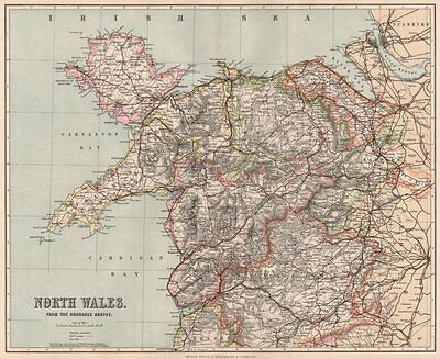 NORTH WALES. showing divisions & parliamentary boroughs. PHILIP 1902 old map