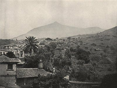 TENERIFE. General view, showing the peak. Spain 1895 old antique print picture