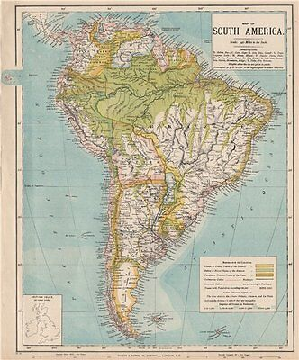SOUTH AMERICA. Amazon rainforest. Pampas. Telegraph cables. LETTS 1889 old map