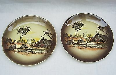Royal Staffordshire Pottery Homeland Series Africa Decorative Plates x 2
