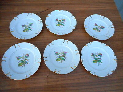 6 Assiettes Plates Fleuries Epoque 19Eme En Porcelaine De Paris ???