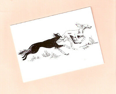 Saluki Pair Notecards Note Card Pack of 4 from the UK