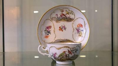 18th C Meissen Exquisitely Hand Painted Ornitholical Cup & Saucer C 1740