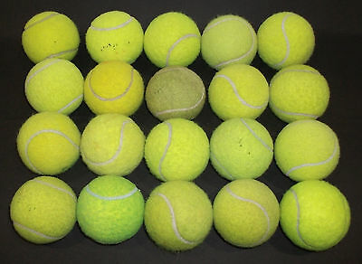 20 X Used Tennis Balls For Your Dogs To Play With