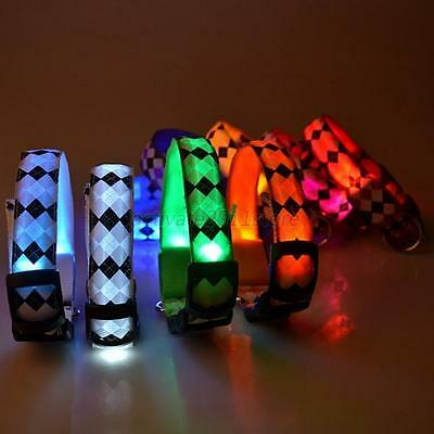 Lovely Safety LED Pet Dog Collar Glow in the Night Dark Collar Light-up Flash