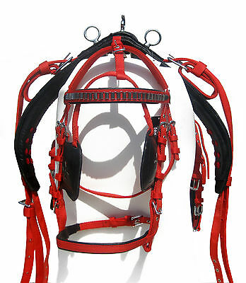 Top Quality Nylon Driving Harness For Single Horse Black/red Color In Shetland