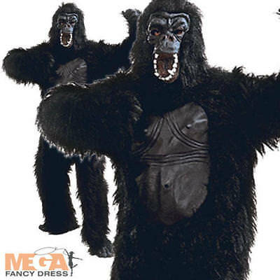 Deluxe Gorilla with Rubber Chest Mens Fancy Dress King Kong Animal Adult Costume
