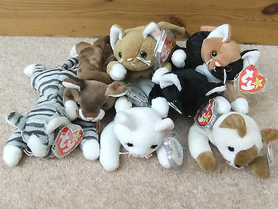 Ty Beanie Babies Cat Nip Snip Zip Flip Chip Prance Pounce Perfect Condition Tags