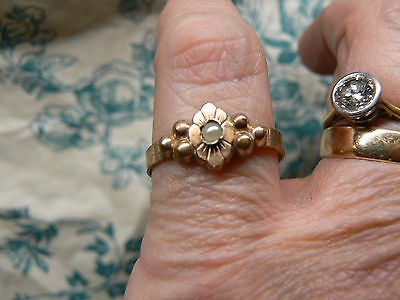 Super Antique French 18Ct Rolled Rose Gold Fix & Seed Pearl Ring  Size O 1/2   N