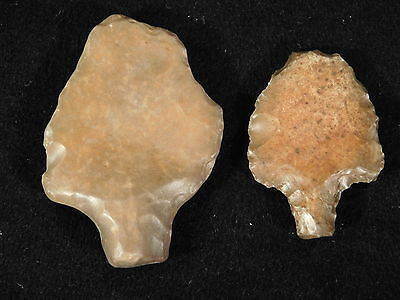 TWO NICE! 55,000 to 12,000 Year Old Aterian Artifacts Found in Algeria! 23.0