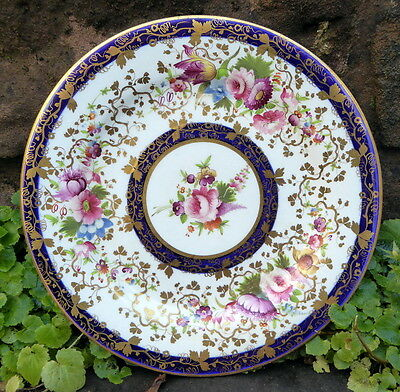 Spectacular Early Handpainted Cabinet Plate With Cabbage Roses & Parrot Tulips