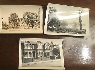 ILFORD 9 Redcliffe Gardens 2 views of Valentine Park 1950s photo snap vintage