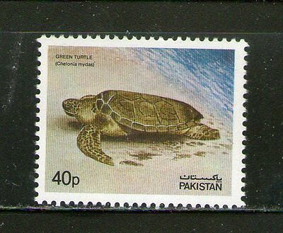 Pakistan : Green Turtle- 1981, Commemo. Mnh.# 15