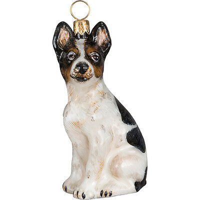 American Rat Terrier Dog Blown Glass Polish Christmas Ornament Decoration