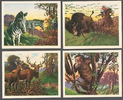 1930's V131 Planters Hunted Animals Trading Cards Near Set of 22/25