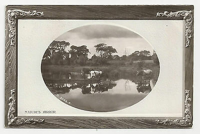 """The Rotary """"Real Photographic"""" Opalette Series, Nature's Mirror - Posted 1909"""