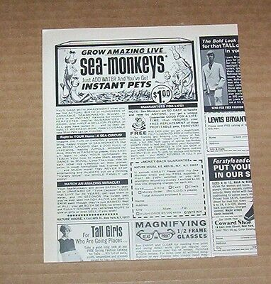1970 vintage ad - CUTE Sea-Monkeys instant pets Magazine Page Print Advertising