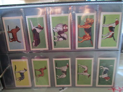 Anonymous**dogs **set Of 25 Cards