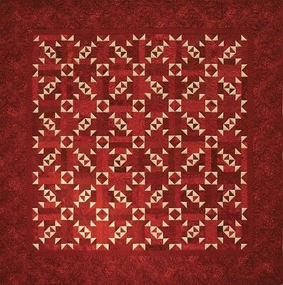 ~ New Pattern - Makes Two Color Pieced Quilt ~ Throw ~ Twin/full ~ Queen ~