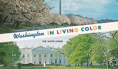 Postcard, Washington In Living Color