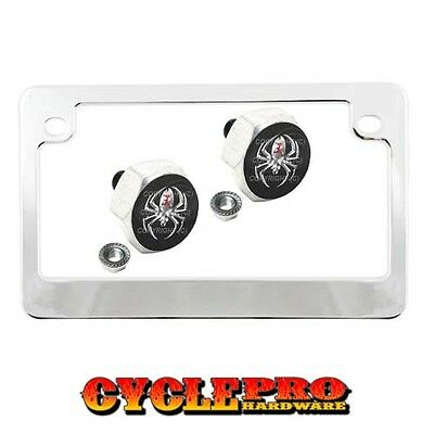 Chrome Metal Motorcycle License Plate Frame Hex Tag Bolt Kit - SILVER SPIDER B