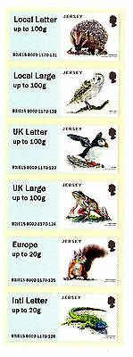 Jersey Gb Frog / Wildlife / Protected Species Sa Stamp Strip 2015 Owl Squirrel
