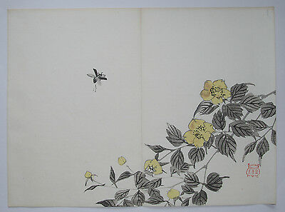 INSECT & FLOWERS BY IMAO KEINEN :  SIGNED MEIJI 1905 Japanese Woodblock Print