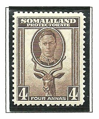 Album Treasures Somaliland Protectorate Scott # 100  4a George VI Kudu MNH