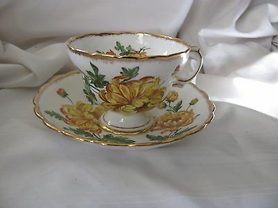 Rosina yellow mums flowers footed cup & saucer set gold rims 5310
